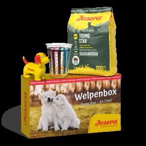 Welpenbox YoungStar 900g