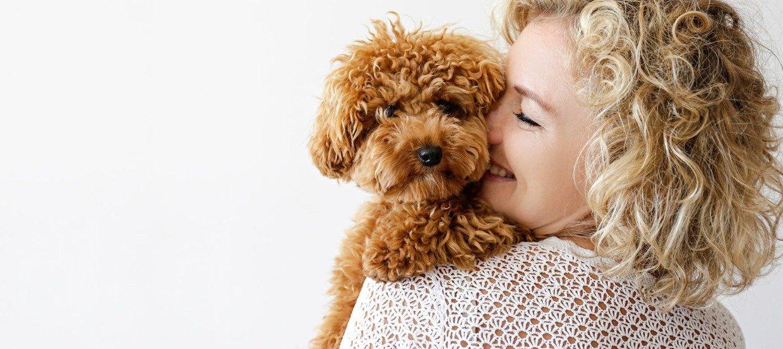 Diese Hunderassen eignen sich auch für Allergiker
