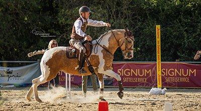 Working Equitation im Trend – Was hat es mit der Reitsportdisziplin auf sich?