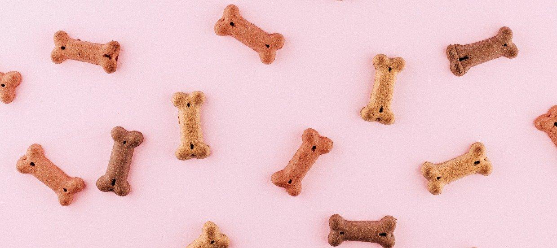 Hundeleckerlis selber machen: 5 einfache und schnelle Rezepte