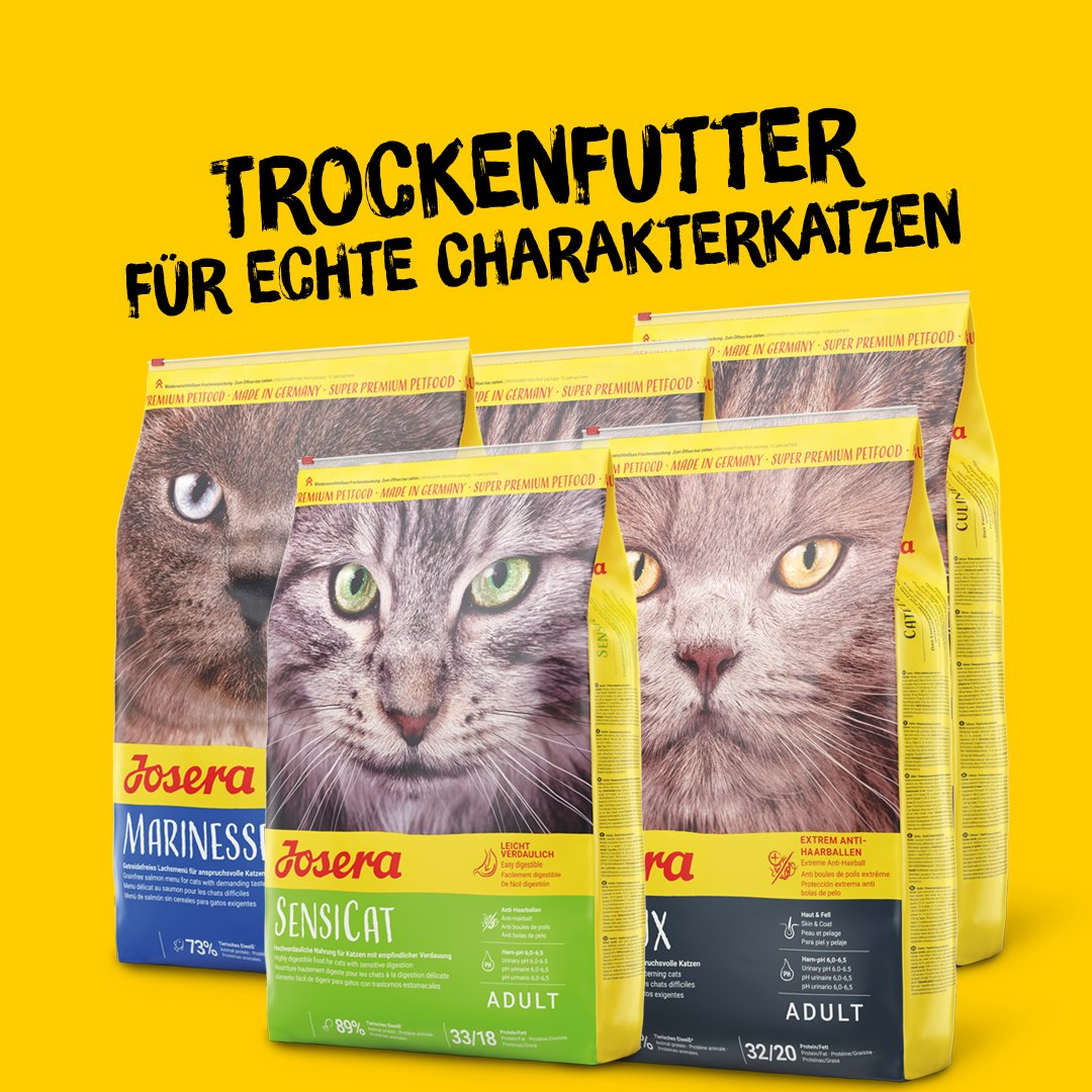 Katze Futter Trocken