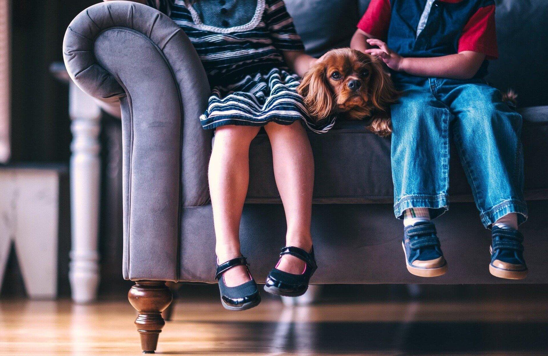 Spaniel auf der Couch zwischen zwei Kindern