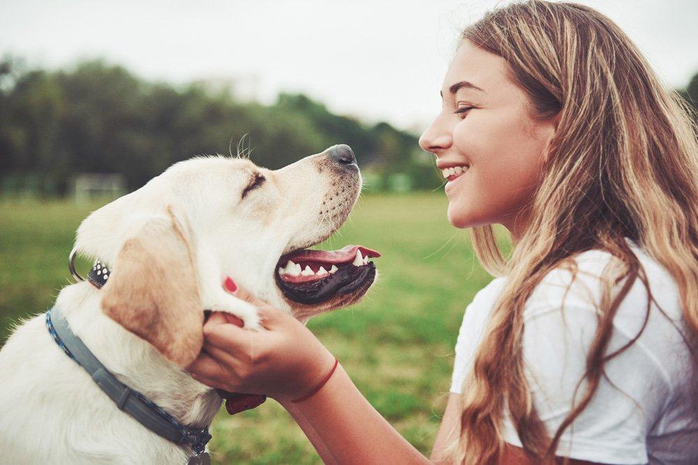 Junge Frau streichelt hechelnden Labrador am Kopf