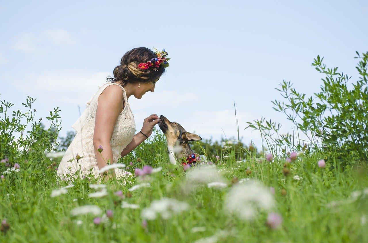 Frau sitzt mit ihrem Hund auf der Wiese und füttert ihn