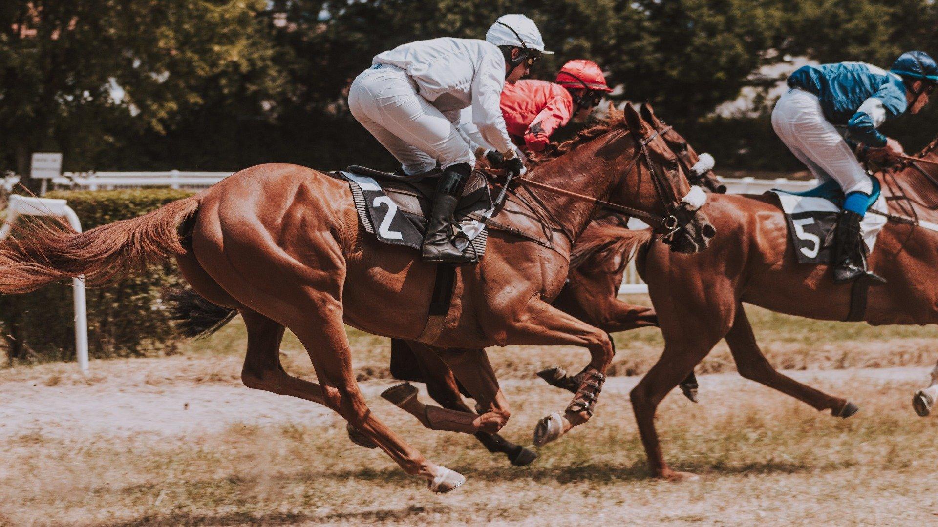 Pferde auf der Rennbahn unter Reiter