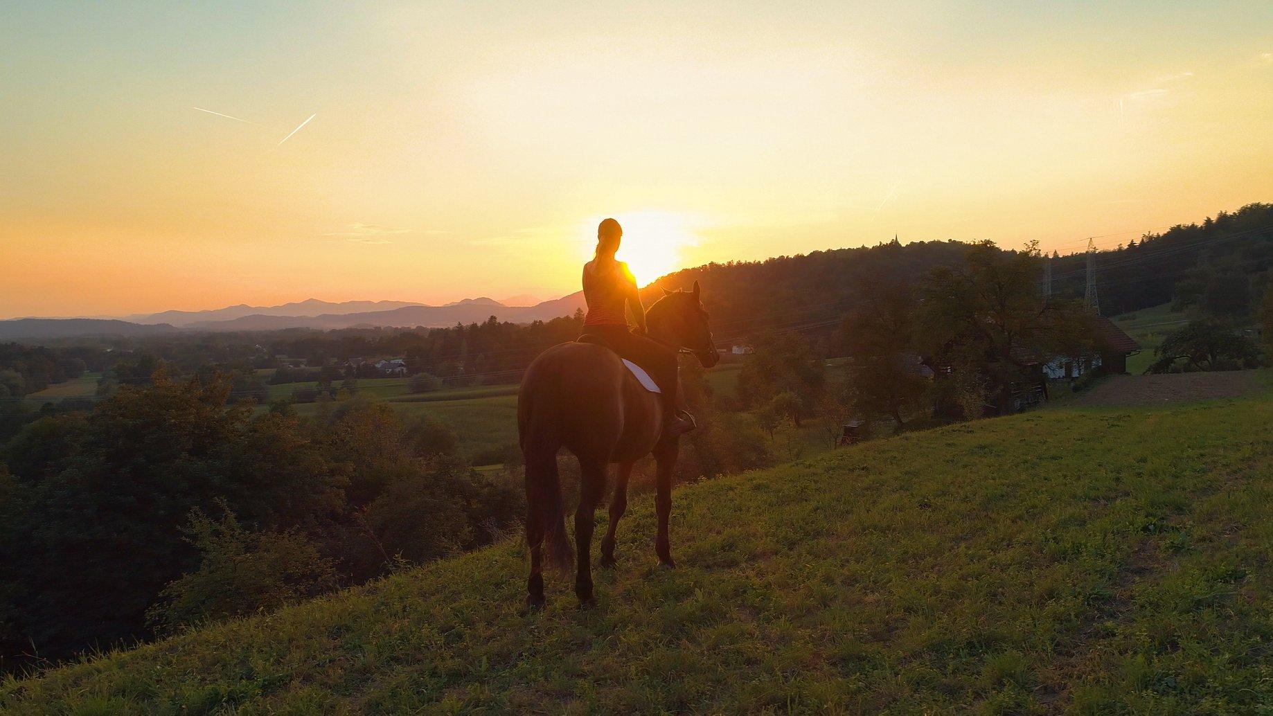 Zubehör beim Reiten auf Pferd